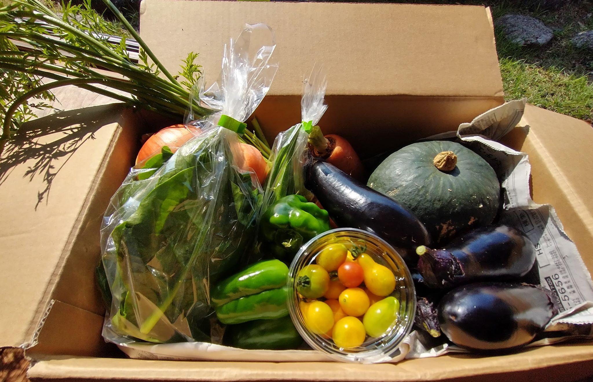 色川野菜BOXの画像