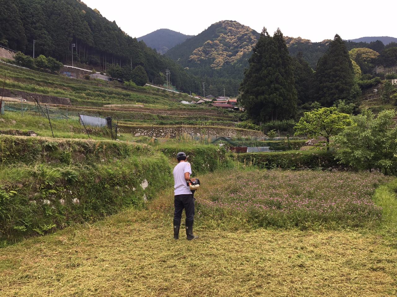 http://irokawamura.com/news/about/20170512d.jpg