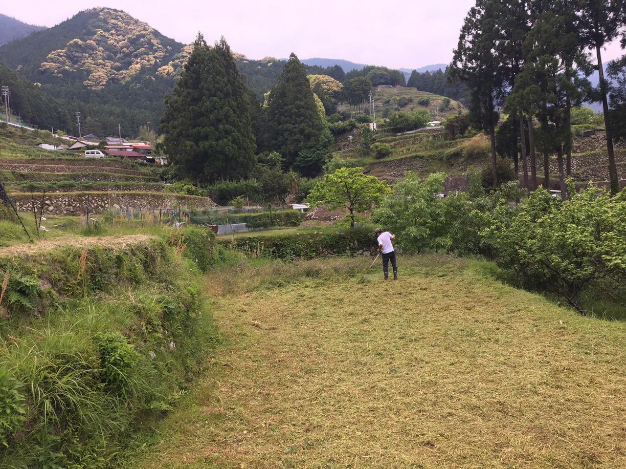 http://irokawamura.com/news/about/20170512e.jpg