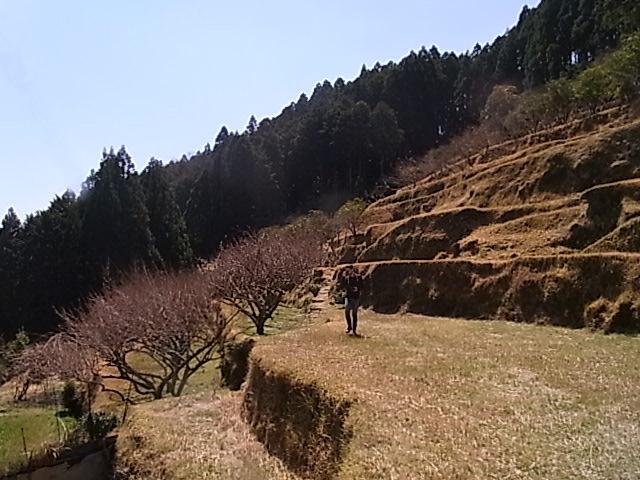 http://irokawamura.com/news/about/RIMG0414.JPG