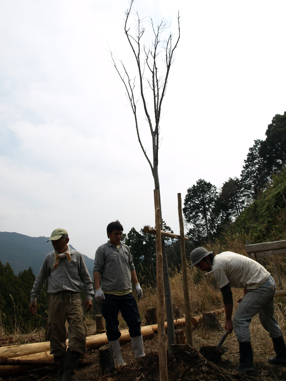 http://irokawamura.com/news/about/jugemu015b.jpg
