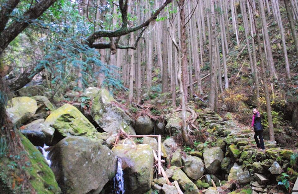 http://irokawamura.com/news/about/jugemu024.jpg