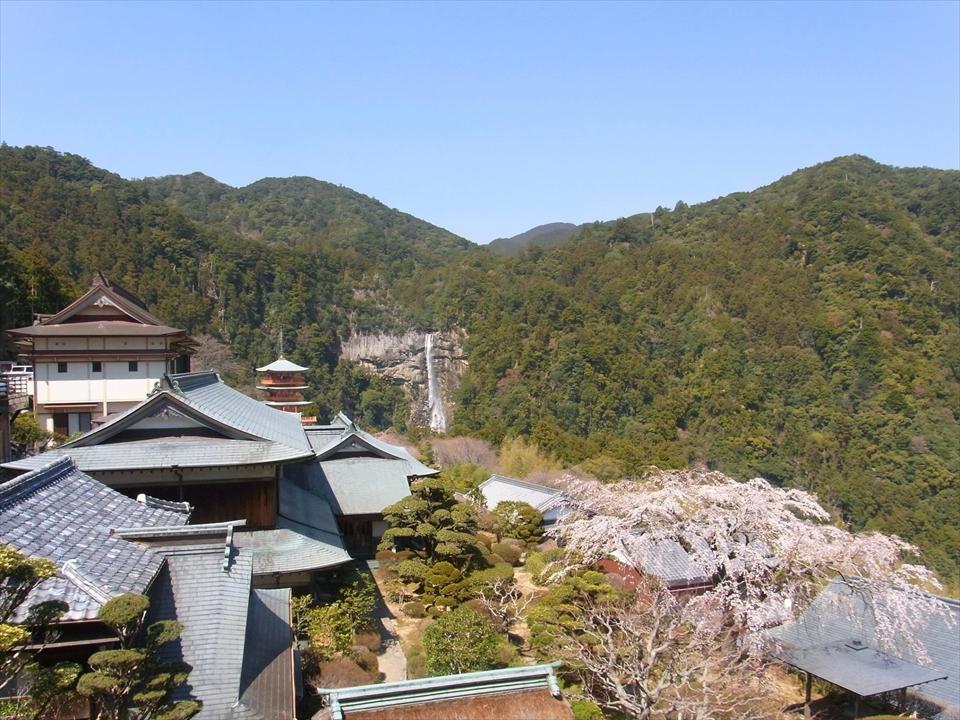 http://irokawamura.com/news/about/t04.jpg