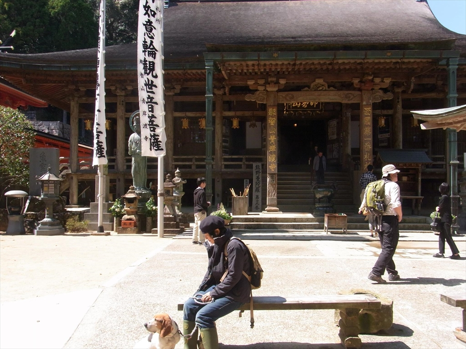 http://irokawamura.com/news/about/t06.jpg