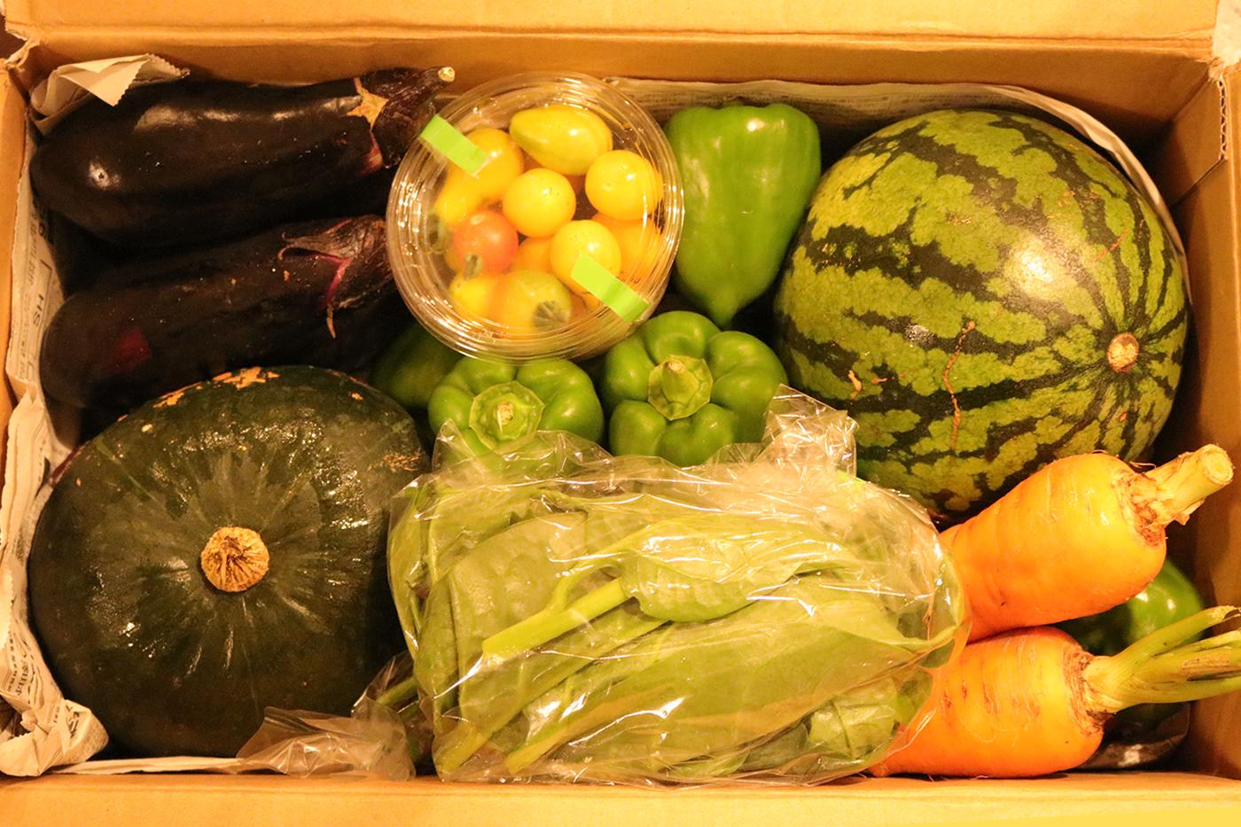 色川野菜BOX通販